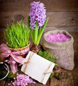 Hyacinth Bulb Jigsaw Puzzle