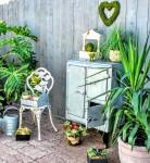 Icebox Plants