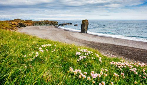Iceland Beach Jigsaw Puzzle