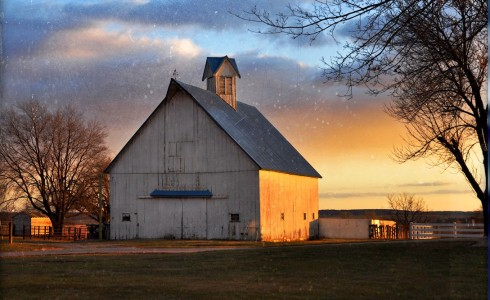 Iowa Barn Jigsaw Puzzle