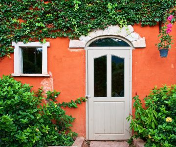 Ivy and Door Jigsaw Puzzle