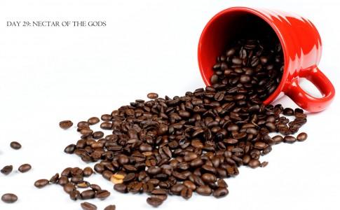 Jamaican Coffee Jigsaw Puzzle