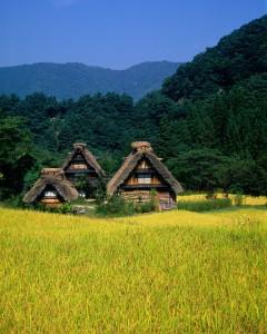 Japanese Houses Jigsaw Puzzle