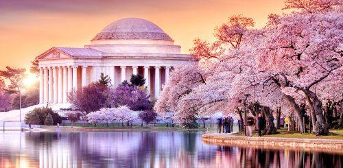 Jefferson Memorial Jigsaw Puzzle