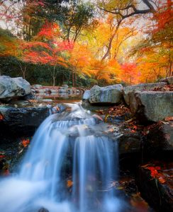 Jiuxi Waterfall Jigsaw Puzzle
