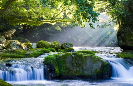 Kikuchi River Jigsaw Puzzle