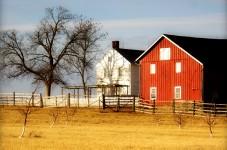 Klingle Farm