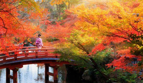 Kyoto Park Jigsaw Puzzle
