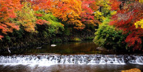 Kyoto Waterfall Jigsaw Puzzle