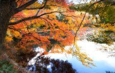 Kyouyochi Pond