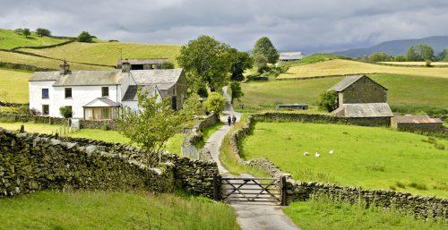 Lake District Farm Jigsaw Puzzle