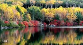 Lake Shirokoma