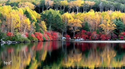 Lake Shirokoma Jigsaw Puzzle