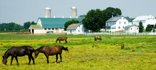 Lancaster County Jigsaw Puzzle