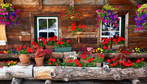 Log Home Flowers Jigsaw Puzzle