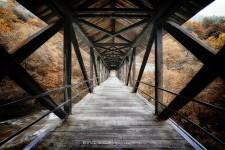 Long Wood Bridge