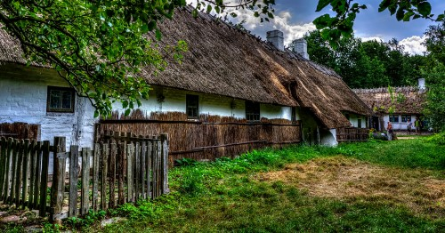 Lots of Thatch Jigsaw Puzzle