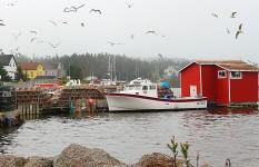 Louisbourg Docks