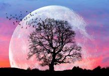 Lunar Aura