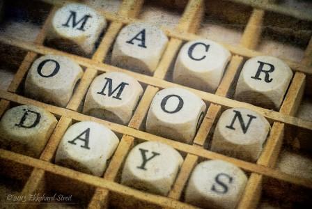 Macro Mondays Jigsaw Puzzle