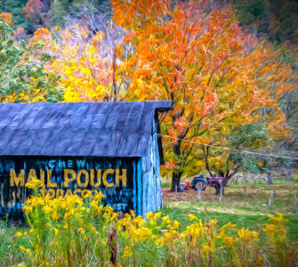 Mail Pouch Tobacco Barn Jigsaw Puzzle