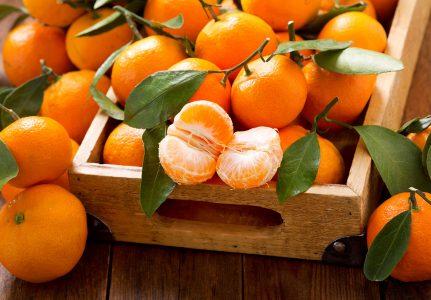Mandarin Oranges Jigsaw Puzzle