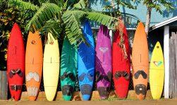Maui Surfboards