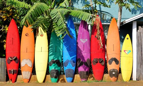 Maui Surfboards Jigsaw Puzzle