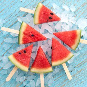 Melon Treats Jigsaw Puzzle