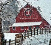 Merry Christmas Barn