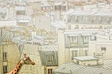 Molly in Paris