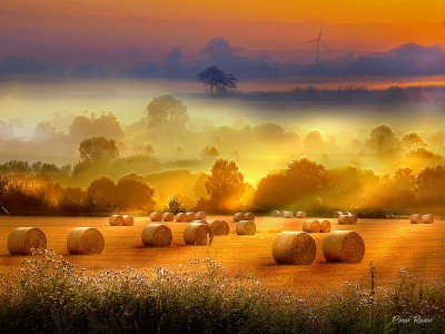 Morning Bales Jigsaw Puzzle