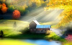 Morning Light Jigsaw Puzzle