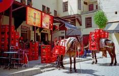 Morocco Coke