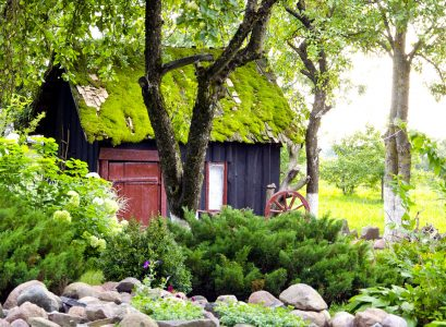 Moss Roof Shed Jigsaw Puzzle