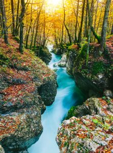 Mostnica Gorge Jigsaw Puzzle