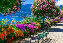 Mother Island Garden