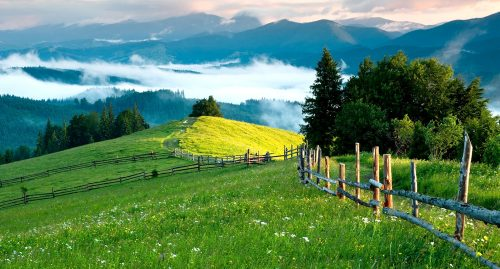 Mountain Meadows Jigsaw Puzzle