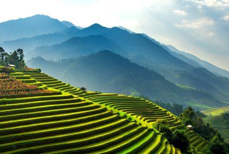 Mu Cang Chai Jigsaw Puzzle