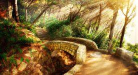Mystic Trail