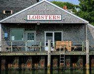 Nantucket Lobsters