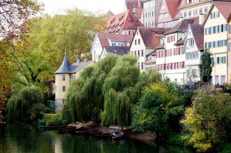 Neckar River Jigsaw Puzzle