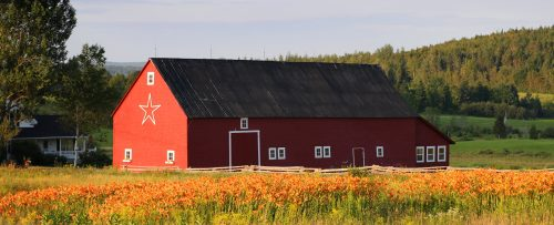 New Brunswick Barn Jigsaw Puzzle