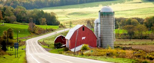 New York Farm Jigsaw Puzzle