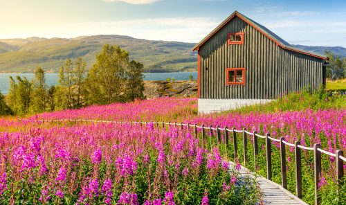 Nordic Cottage Jigsaw Puzzle