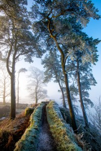 Northumberland Trail Jigsaw Puzzle