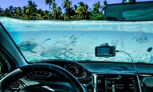 Ocean Drive Jigsaw Puzzle