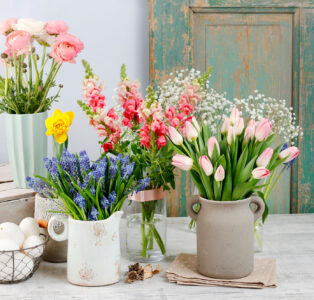 Old Door and Flowers Jigsaw Puzzle