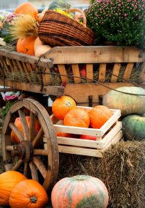 Old Pumpkin Wagon Jigsaw Puzzle