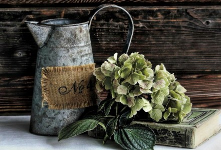 Old Watering Can Jigsaw Puzzle